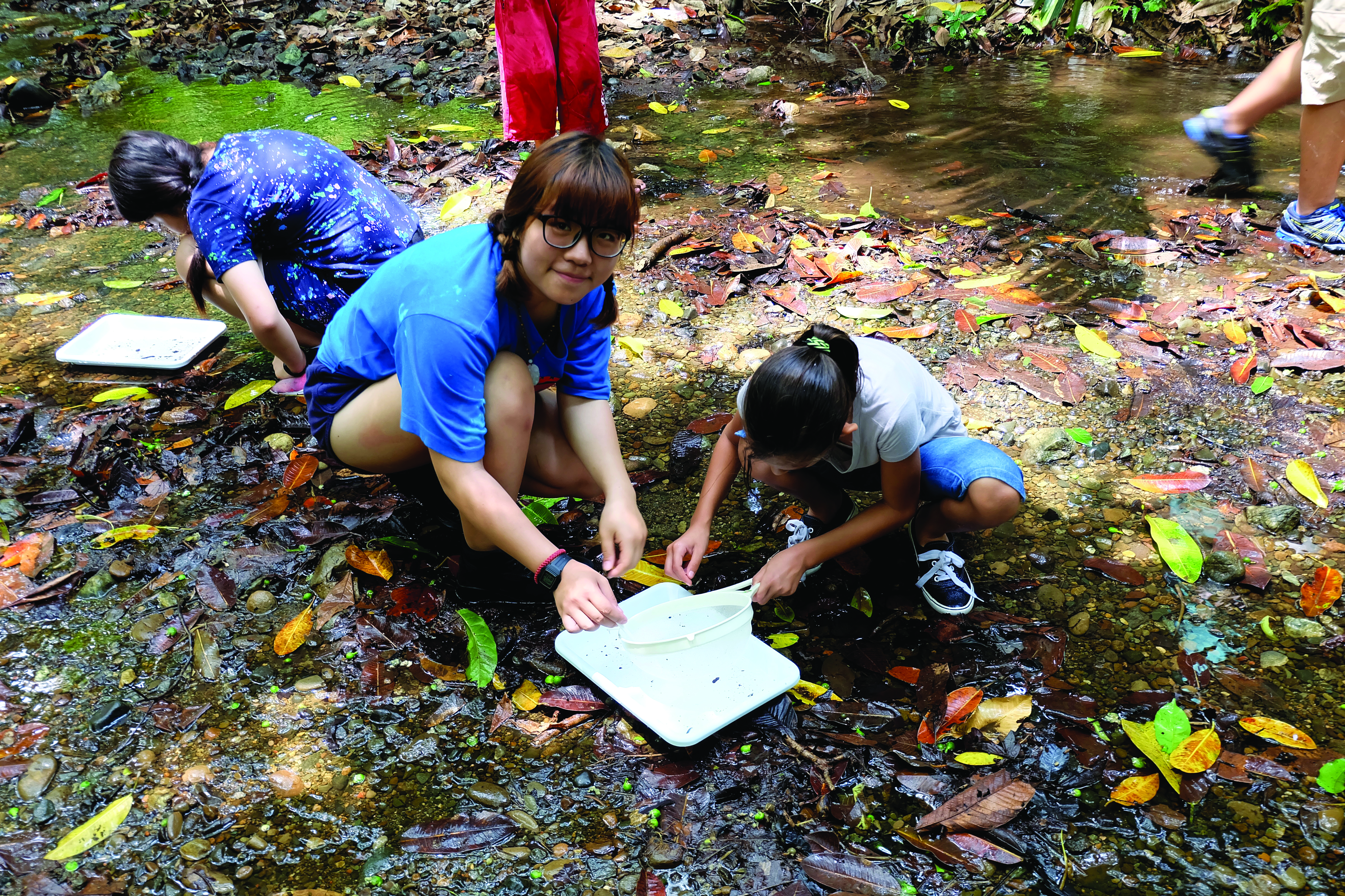Students collect rain forest samples on a field trip to Costa Rica organized by World International School. Districts must manage political and safety concerns as they continue to send students abroad.