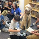 Best (practices) in show: Therapy dogs in schools