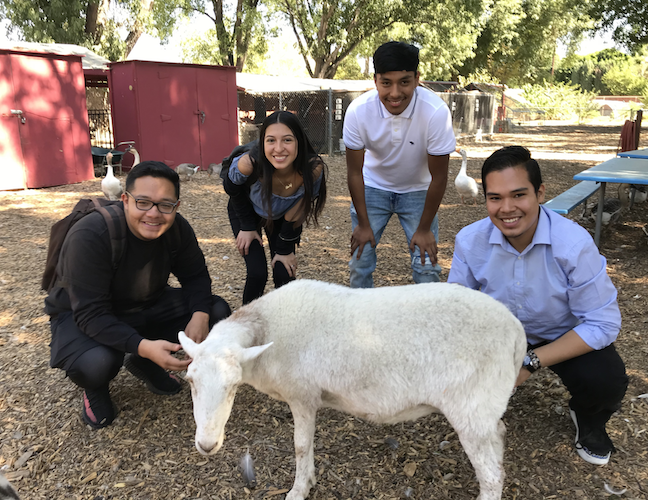 Successful alternative high school programs offer opportunities for learning outside the traditional classroom environment. Here, students at John R. Wooden High School in Los Angeles USD participate in activities on a small teaching farm.