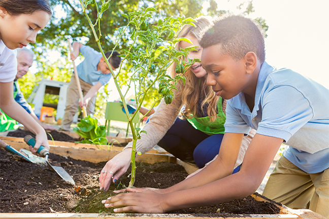 Healthy eating in schools is being promoted through farm to school programs that encourage students to grow their own fruits and vegetables at school.