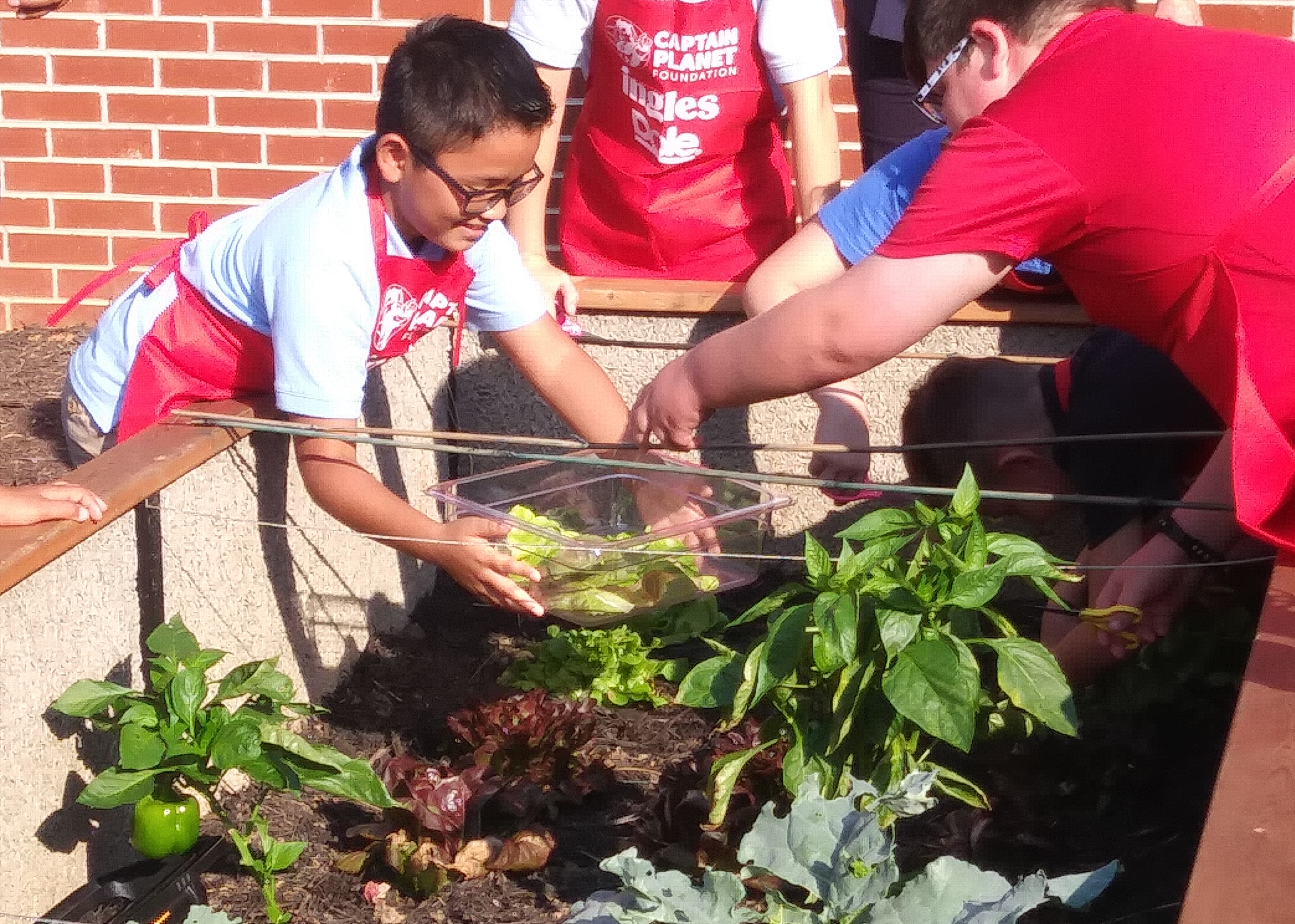 "Educators at Springhill Elementary School in Knoxville, Tennessee', call their sensory garden the ""outdoor classroom."""