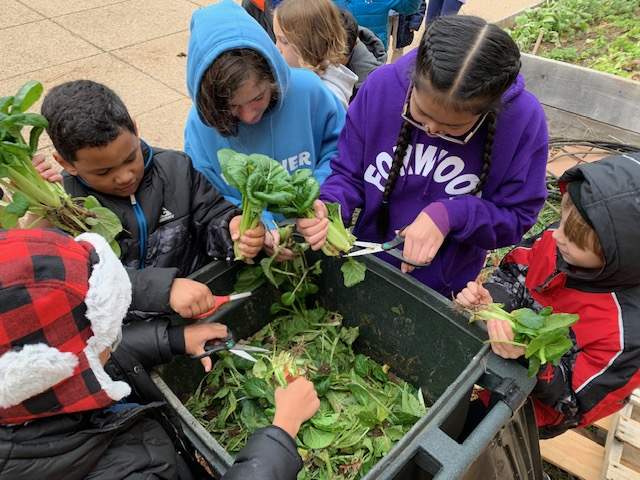 The colors, textures and scents of the fruit and vegetable gardens, trees and other plants in the school sensory garden at Forwood Elementary School in Delaware can bring classroom assignments alive